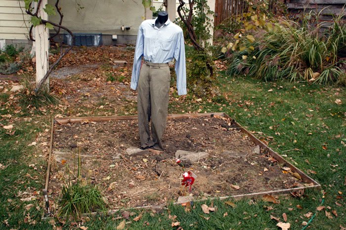 Lonely scarecrow