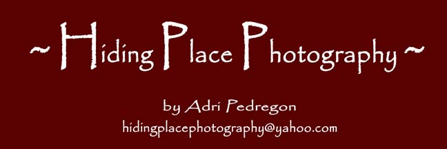 Hiding Place Photography