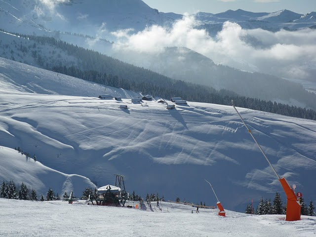 [ski14]