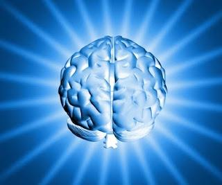 Como trabajar tu cerebro.