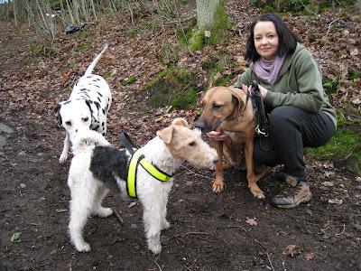 Ägarinnan och hennes hundar
