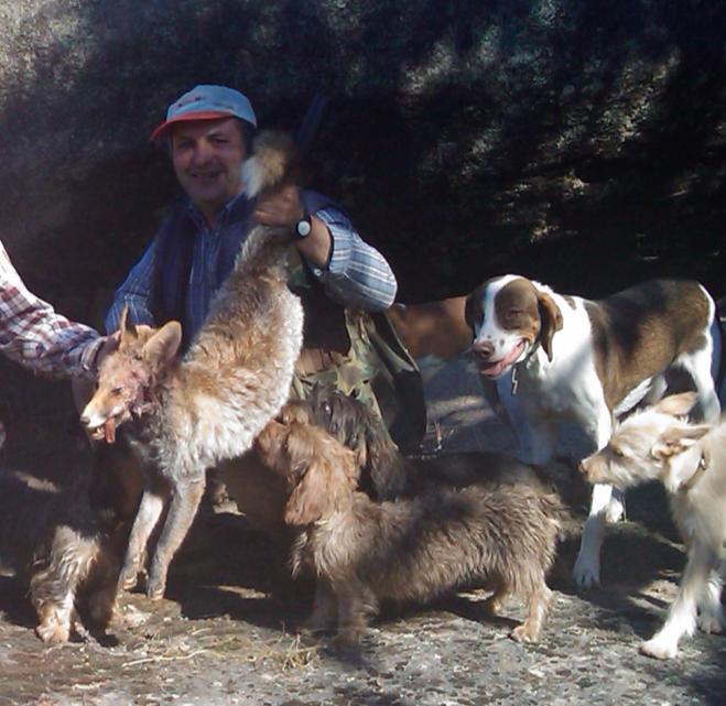 Paco y el perro Pon