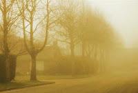 Sólo es real la niebla