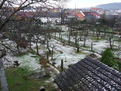 The first snow in 2008, Pisek, November 21 :)