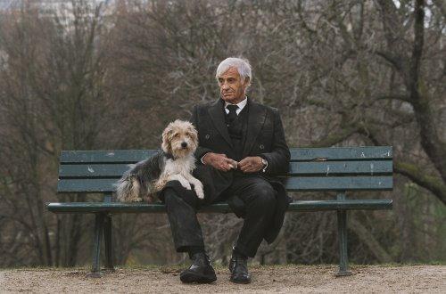 [Sec+3+|+Homme+et+son+chien+.jpg]