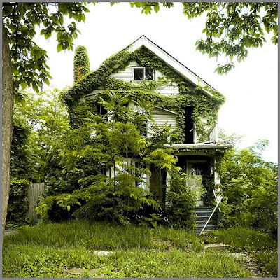 Overgrown house in Detroit MI