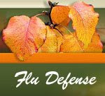 Flu-Defense Website