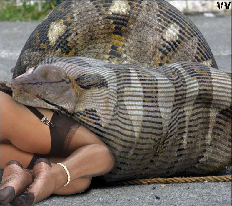Snake Eat Girl http://moukanei.blogspot.com/2010/09/breaking-news-snake-eats-woman.html