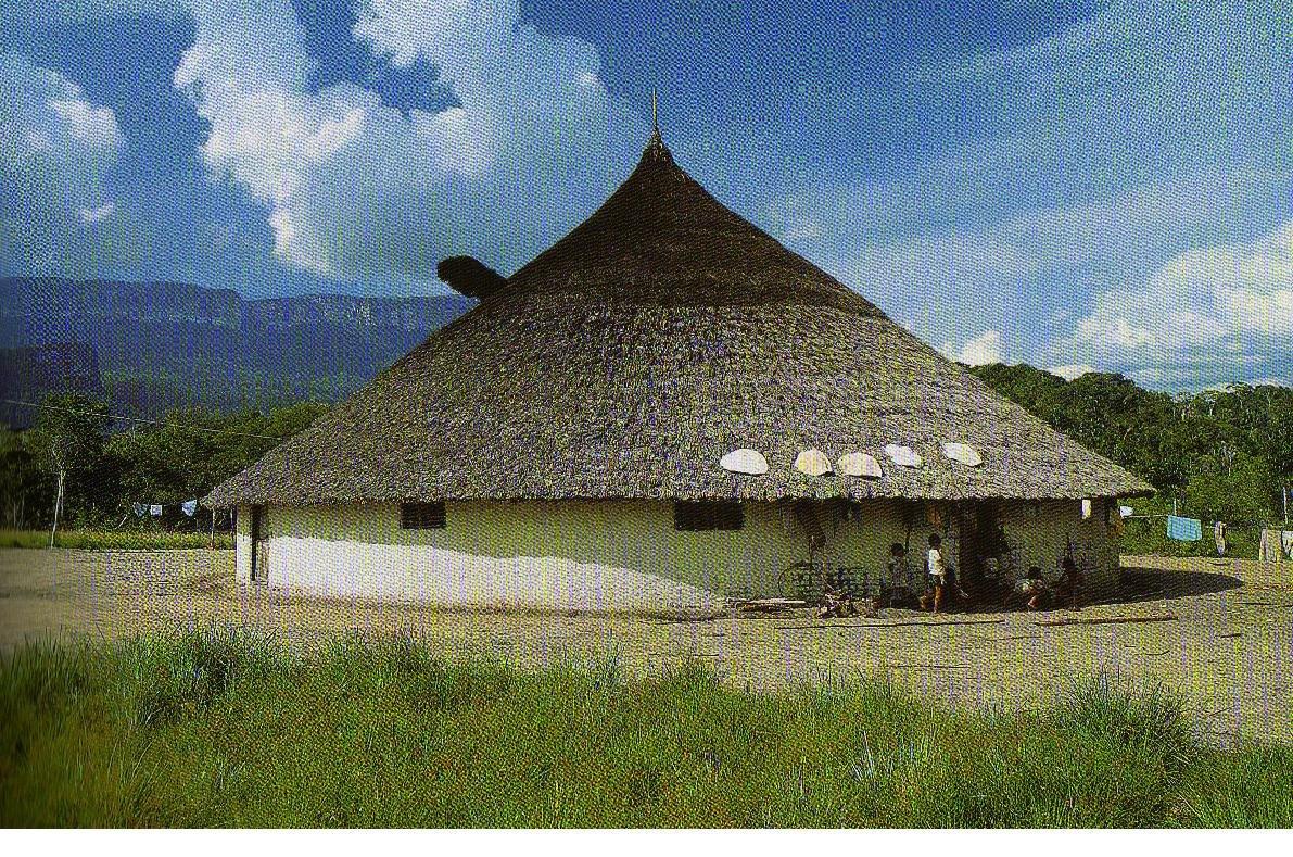 arquitectura ind gena yekuana y piaroa