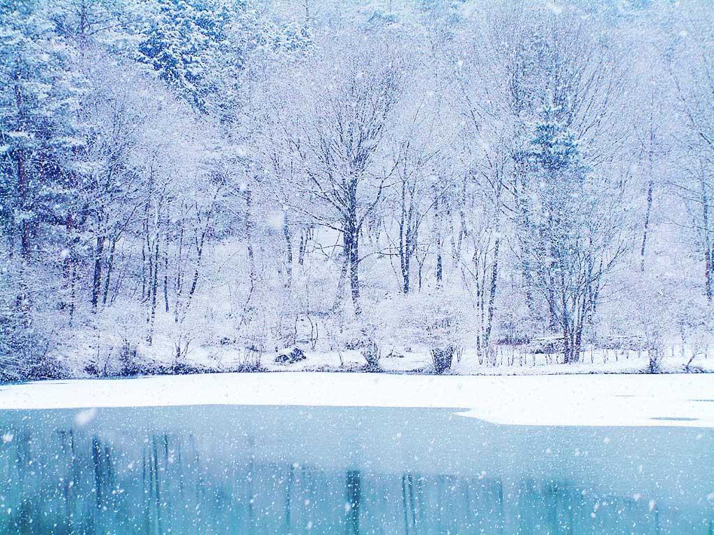 http://4.bp.blogspot.com/_Ps1tKzB_yUA/TQaTsjS_s9I/AAAAAAAAAW4/M4cirzVy-mE/s1600/winter_wallpaper.jpg