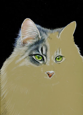 fur in the paint cat on ampersand pastelbord