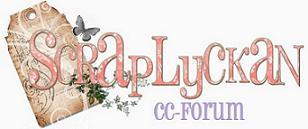 Till cybercrop forumet