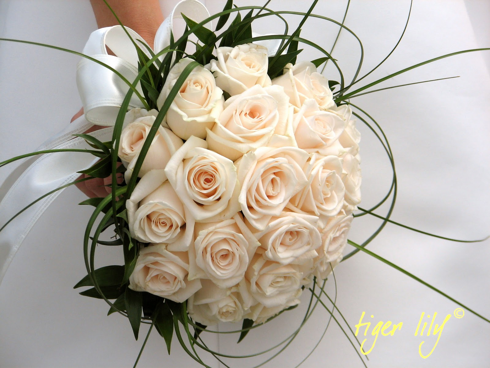 Tigerflowers the meaning of roses part 2 white roses the meaning of roses part 2 white roses mightylinksfo Images