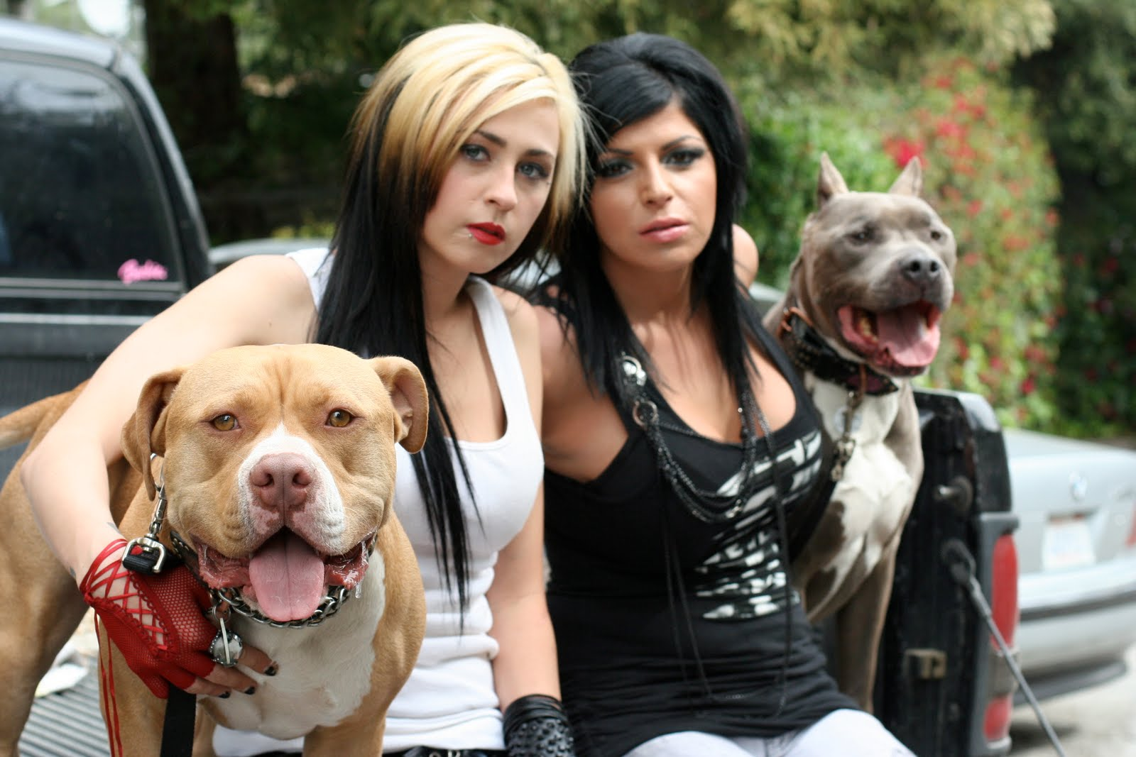 PIT BULLS & PAROLEES FILMING ITS NEW SEASON