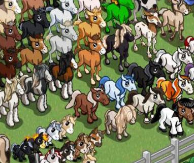 Farmville Horse Foal Breeding Guide More Details
