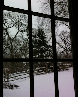 Snowy Scene Outside My Reading Window