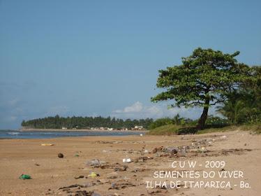 Praia suja antes da limpeza