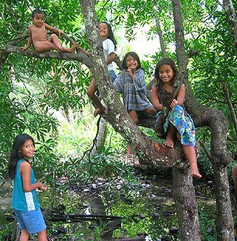 http://4.bp.blogspot.com/_PxzDuG1PBA8/TTPfOyMDakI/AAAAAAAAAHo/T581FId9ZEQ/s1600/Children%2Bin%2BTree.jpg