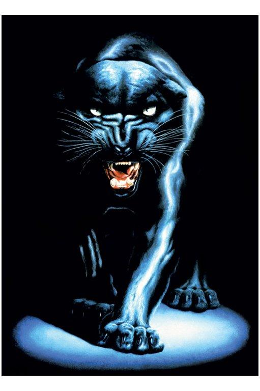 Labels black black panther panther