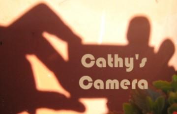Cathy's Camera