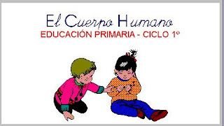 external image CUERPO+HUMANO+C1.jpg