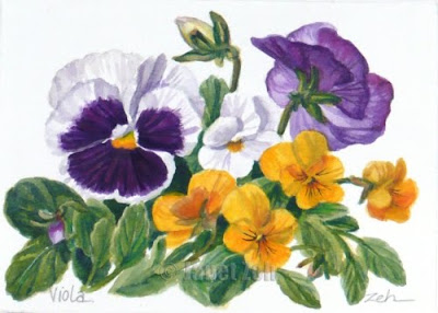 Pansies Botanical Painting