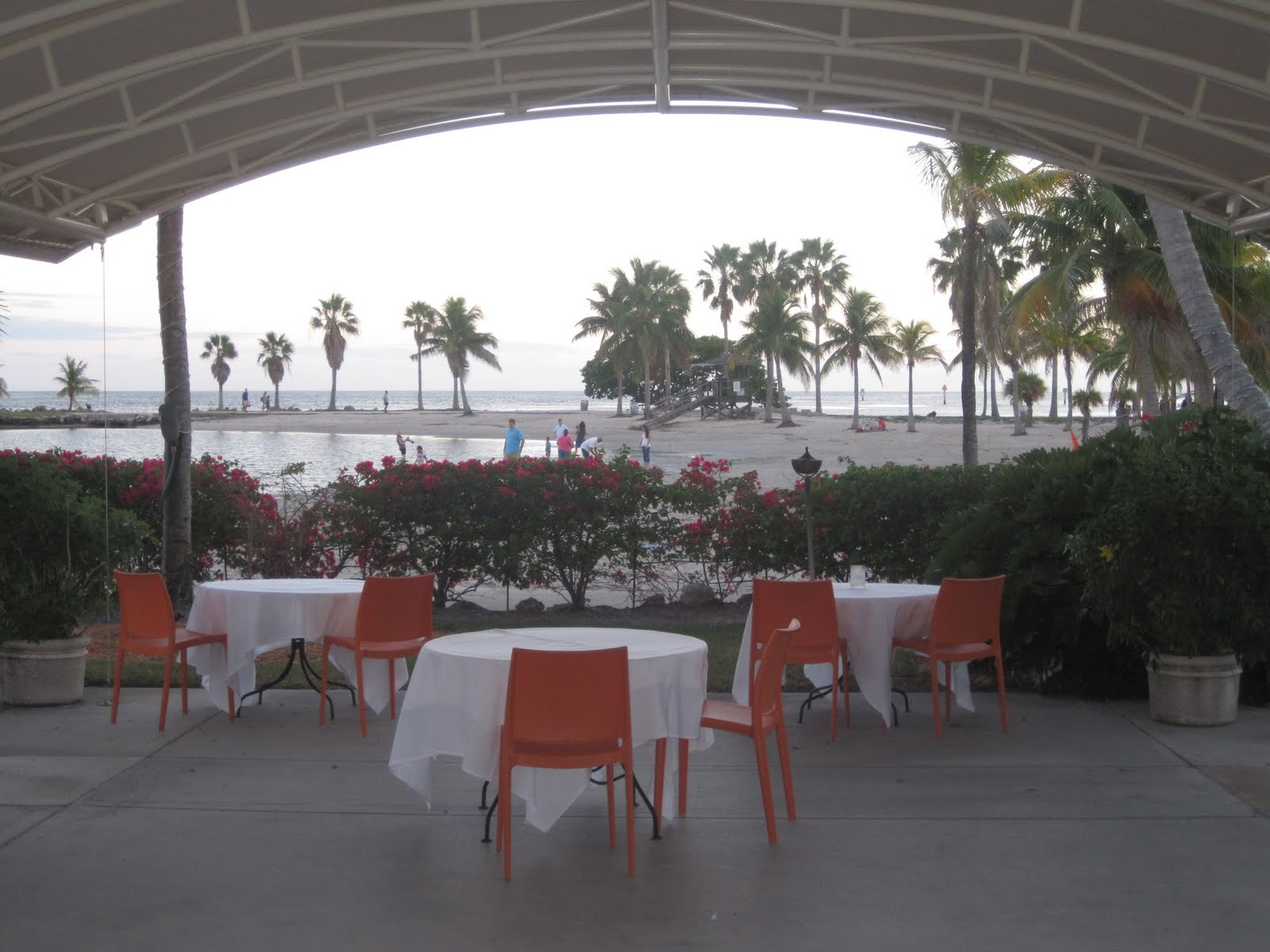 Jetset coco red fish grill miami for Red fish restaurant