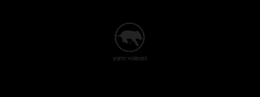 Yann Valeani