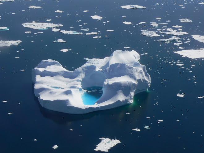 Iceberg East Greenland