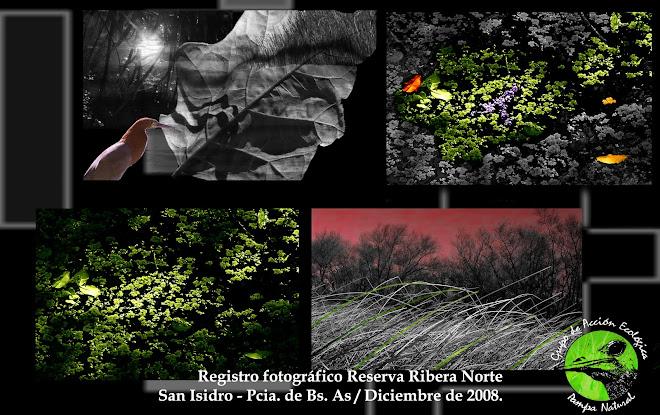Reserva Ribera Norte- Visita