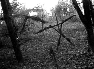 blair-witch-project-photo2.jpg