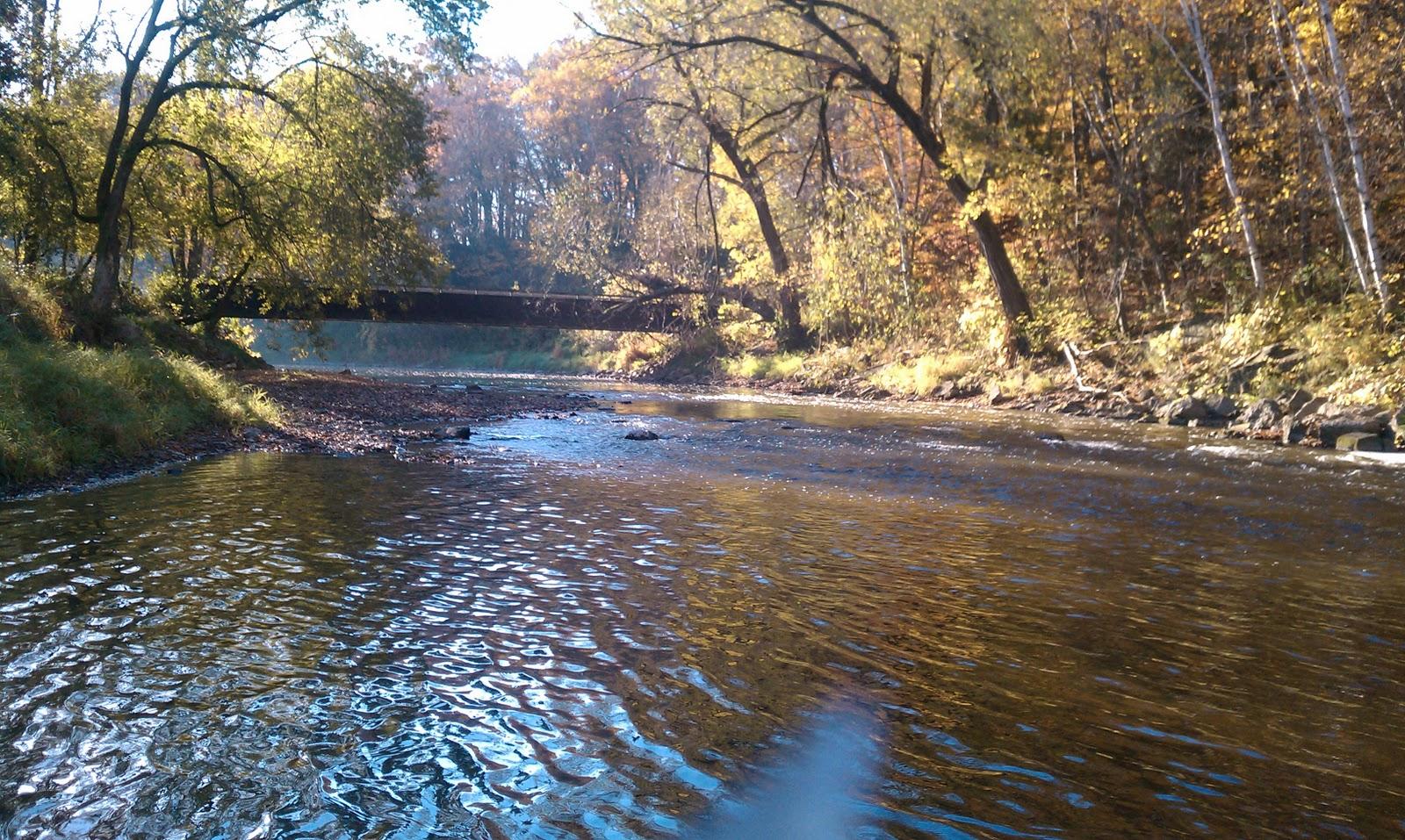 Illinois wisconsin fishing salmon fishing the sheboygan for Milwaukee river fishing report