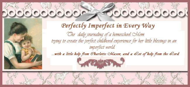Perfectly Imperfect In  Every Way