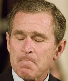 Gran careta de Bush