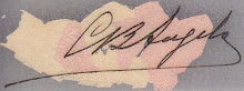 Carolina [Assinatura]