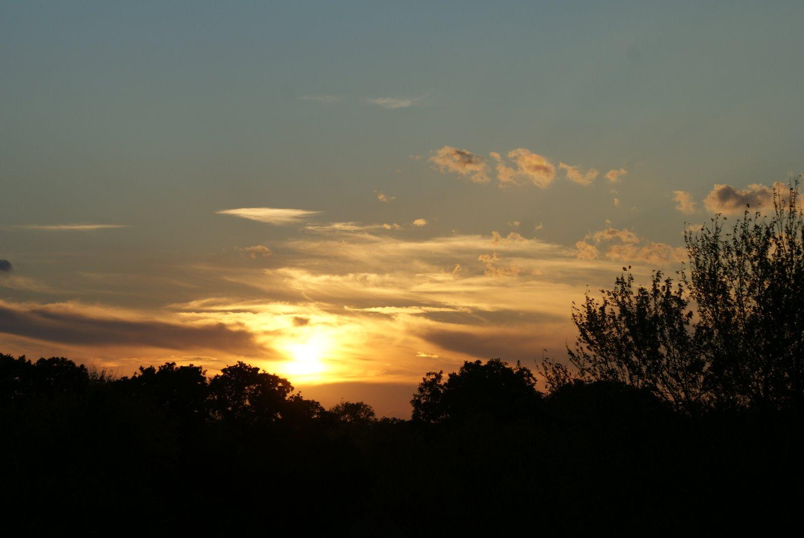 [Sunset+Nov+3+2008]