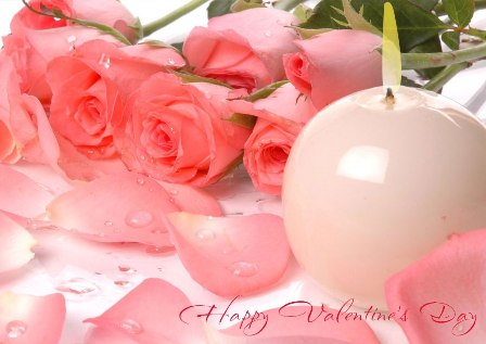 lindsay free valentines roses wallpapers, beautiful love rose, Natural flower
