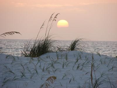 favorite beach photo