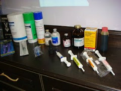 Ubat-ubatan ternakan