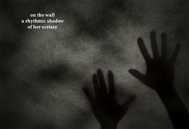 Shadow Poetry - Haiku & Senryu Examples