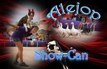 Recomendado: Alejop Show Can