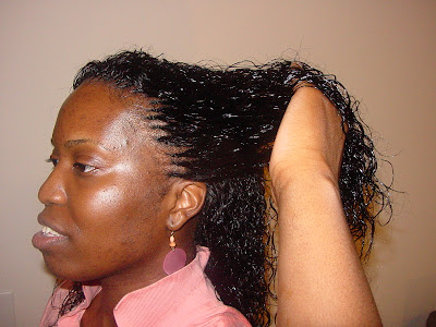 Tree Braid Wet and Wavy Tree Braids