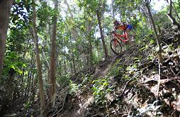 Photos Puerto Rico Mountain Bikes Tours