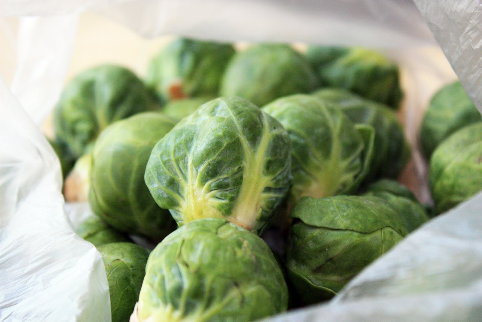 Triple5Light: I think Brussels Sprouts(Fresh) are currently my ...