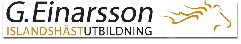 G Einarsson Islandshästutbildning
