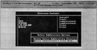 FILER - Delete Subdirectory Options