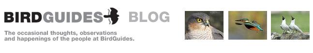 BirdGuides Blog