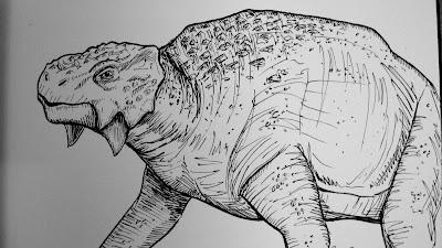 scutosaurus skeleton  Scutosaurus Skull Scutosaurus in
