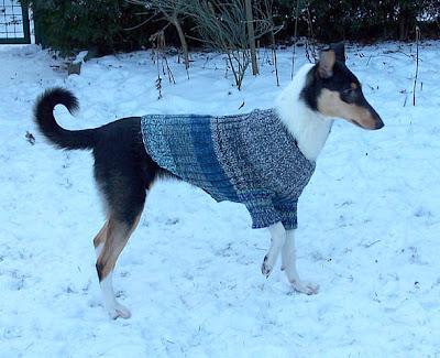 Karins Handarbeits und Hundeblog: Anleitung für Hundekleidung (Pulli)