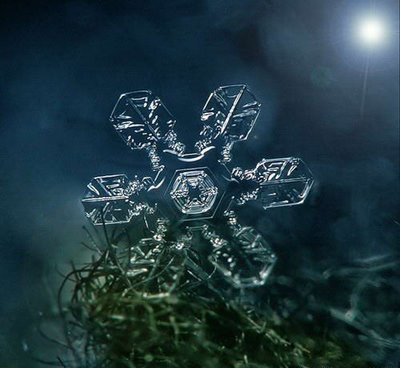 Artistic Snowflake Shapes 11